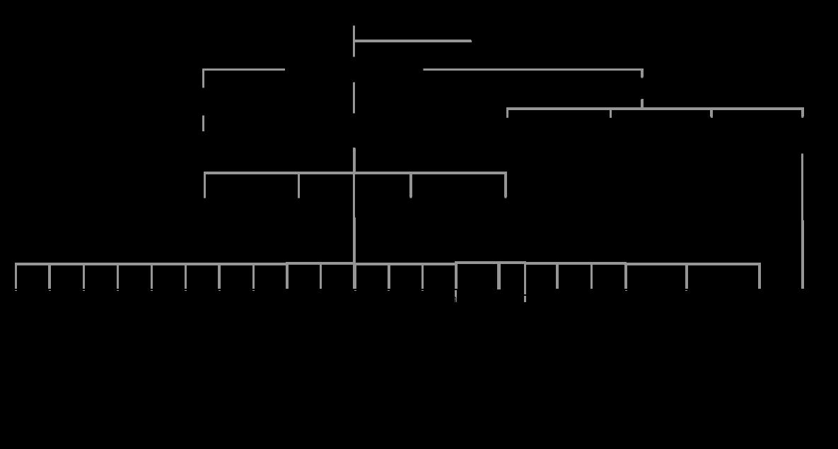 构造架构图